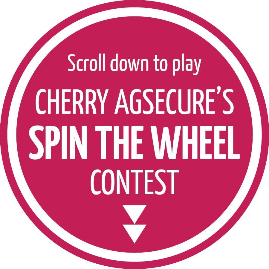 2016 Cherry Spin 2 Win